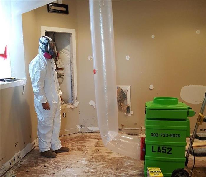 Mold Job in Englewood