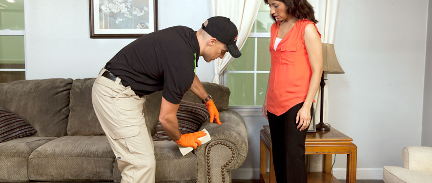 Englewood, CO carpet upholstery cleaning