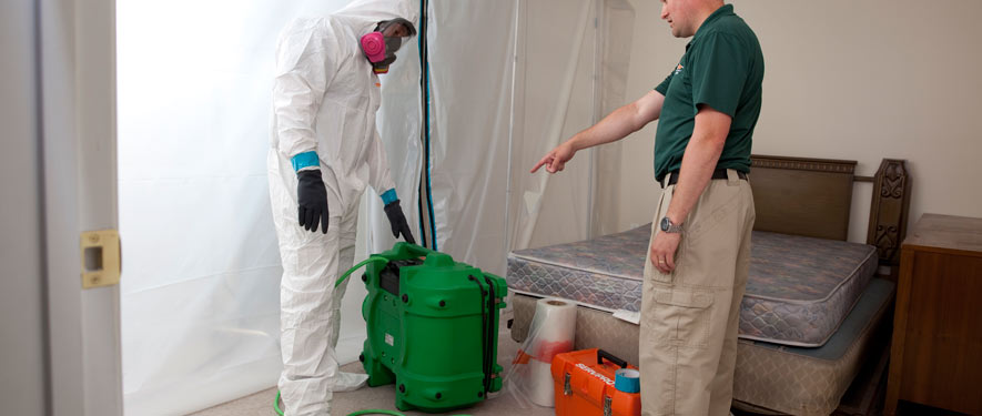 Englewood, CO mold removal process